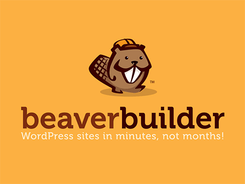 Fixing Extra Break Tags in Beaver Builder