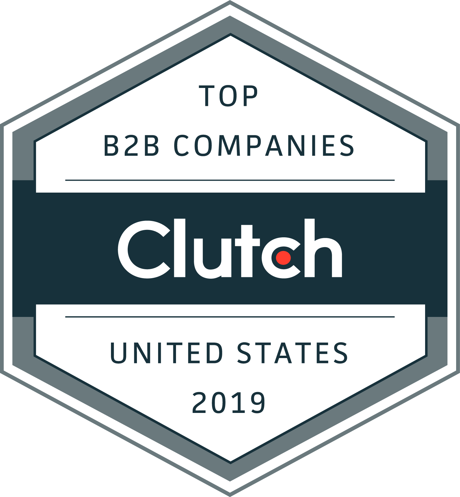 Mr. Technique received 2019 Clutch Award Leading B2B Company in the United States